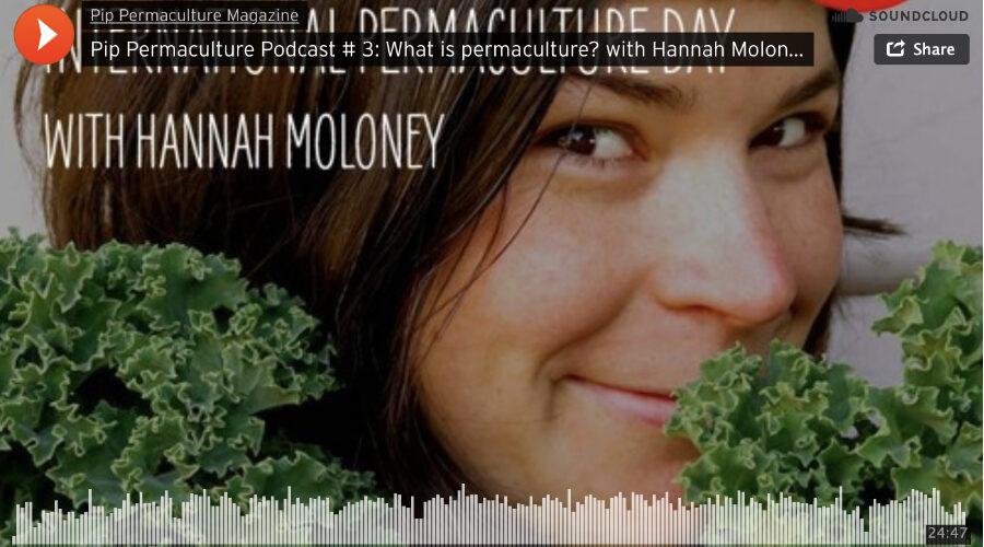 Pip Magazine — podcast #3 with Hannah Moloney