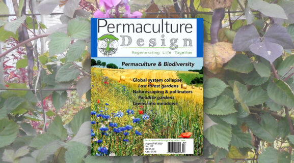 Permaculture Design Magazine cover