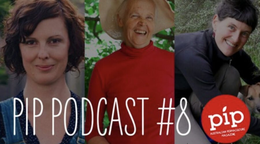 Pip Magazine — podcast #8: Women as Change Makers